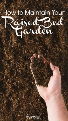 I love talking with you about some ideas on how to build a raised bed garden. This week will be about how to maintain your raised bed garden. Raised bed gardens are very simple to maintain and I will be sharing my process! via @jen_dunham