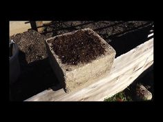 How to Make Hypertufa Pots - Empress of Dirt