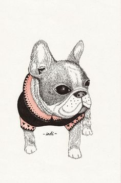French Bulldog illustration.