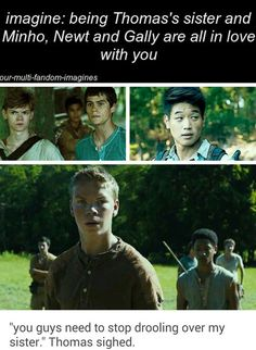 (I'm Thomas's sister) Thomas: Guys seriously stop... *they all look at him* Gally: Why? Newt: Look at her! Minho: *drooling*