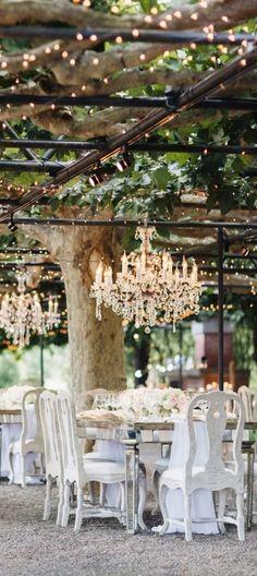 Vineyard Wedding                                                                                                                                                                                 More