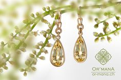 Beryll Earrings  https://www.etsy.com/de/listing/400034389/ohrhanger-in-gelbgold-750-mit-gelben?ref=shop_home_feat_1