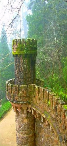 Ireland castle ruins looks like an abandoned fairy tale...