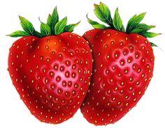 fruits fraises