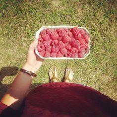 Lato, trwaj wiecznie. Summer, stay forever. #lato #summer #nawsi #countryside #prosteżycie #simplelife #lipiec #july #maliny #raspberry