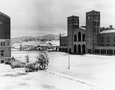 Snow on the UCLA campus in January 1932; The 1932 snowstorm incited madness across the Southland. Coyotes emerged from the foothills of the San Fernando Valley, and in Pasadena students rioted when a snowball fight spiraled out of control.