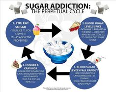 SUGAR ADDICTION; THE PERPETUAL CYCLE.  1) You eat sugar.  You like it, crave it, it is addictive; 2) Your blood sugar levels spike.  Dopamine is released in the brain, mass insulin secreted to drop blood sugar levels; 3) Blood sugar levels fall rapidly, causing immediate fat storage; body craves more sugar; 4) Hunger and Cravings.  Low blood sugar levels cause increased appetite and cravings.  THE CYCLE REPEATS.  STOP REPEATING THIS CYCLE.  IT IS KILLING YOU.