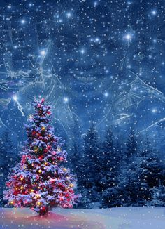 Try this effects combo by lera_rabykina on Photo Lab Merry Christmas Images, Christmas Pictures, Christmas And New Year, Christmas Lights, Xmas, Christmas Tree, Creation Photo, Montage Photo, Moon Art