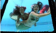 B Ocean Resort's Wreck Bar -- Ft. Lauderdale -- Mermaid show on Fridays and Saturdays