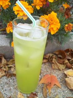"""Melon Spritzer: """"This is a yummy concoction I made up years ago!"""" -alligirl"""