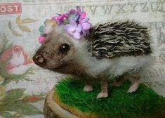 Original Cute Needle Felted Frida Baby Hedgehog Artist Robin Joy Andreae   #AllOccasion