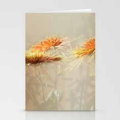 Autumn/秋菊 12 Stationery Cards by Katherine Song  - $12.00