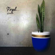 Design Twins' smooth, simple and stylish indoor & outdoor pots are the perfect addition to any home. Cement Pots, Concrete Planters, Diy Planters, Painted Flower Pots, Painted Pots, Potted Plants, Indoor Plants, Plant Pots, Deco Cactus