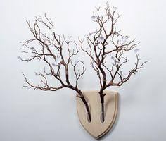 Elkebana, a botanical wall trophy. If you enjoy the aesthetic appeal of animal antlers but hate the idea of taxidermy. Handmade in Italy.