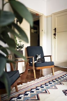 Even the cat feels at home on the lovely Danish-style armchairs! | See Why Reddit Is Freaking Out Over This Apartment | POPSUGAR Home Photo 9