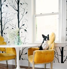 Wall decals are the perfect substitute for painting your apartment! #paintfree #decor
