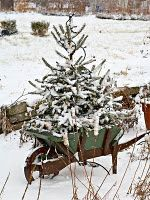 Outdoor Christmas Tree - rustic and beautiful