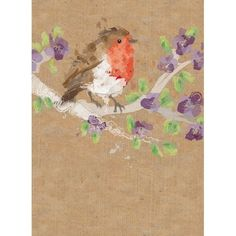 Rspb robin bird blank #greetings card #birthday #charity,  View more on the LINK: http://www.zeppy.io/product/gb/2/322385053755/