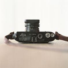 https://flic.kr/p/7fBWep | Leica M4 - black paint | Lerberget November, 2009. Hasselblad 503 CX Hasselblad CF Makro-Planar 120mm f/4 T* Reala
