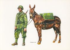 Italian Campaign, Italian Army, Ww2 History, Military Diorama, Wwii, Reggio, World War Two, Military Uniforms, Illustration
