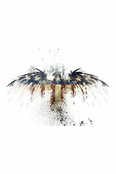 Eyes On Walls Eagles Become Framed Fine Art Print by Alex Cherry