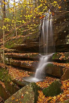 Anglin Falls near Berea , Kentucky check this one off...it's just beautiful
