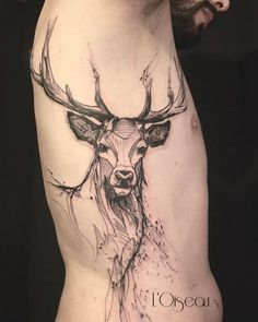 Sketch work deer tattoo on the right side ribcage.