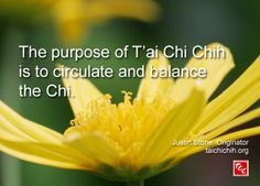 Quote by Justin Stone, originator of the moving meditation T'ai Chi Chih Justin Stone, Martial Arts Quotes, Tai Chi Qigong, Ways To Reduce Stress, Zen Master, Daily Wisdom, Finding Happiness, True Nature, Chinese Medicine