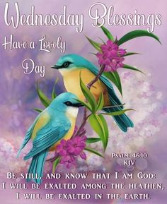 Wednesday Blessings~~J~ Psalm Happy Wednesday Images, Wednesday Morning Greetings, Wednesday Morning Quotes, Blessed Wednesday, Good Morning Wednesday, Happy Morning Quotes, Morning Inspirational Quotes, Good Morning Gif, Good Morning Messages