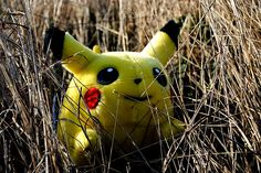 The search is over.... Funny Pokemon GO Tweets