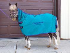 Mini horse sized coolers