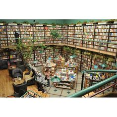 If you're ever in Mexico City, be sure to check out Libreria El Pendulo. What are some of your favorite bookstores? Mexico City, Riviera Maya, Library Books, I Love Books, Wonderful Places, Wonderful Life, Restaurants, Destinations, Places To Visit