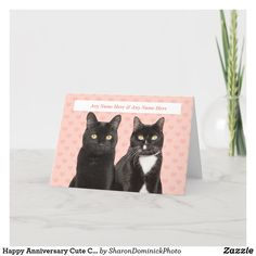 Happy Anniversary Cute Cat Couple With Custom Name Holiday Card Anniversary Greeting Cards, Happy Anniversary, Cat Couple, Zazzle Invitations, Holiday Cards, Create Yourself, Recycling, Vibrant, Seasons
