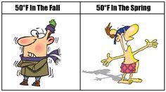 Fall vs Spring - Imgur