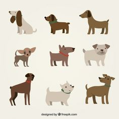 Cute dogs illustration Free Vector