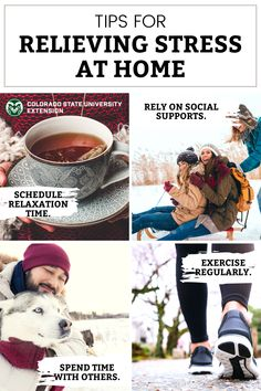 Does stress sometimes get in the way of your enjoyment of the holidays? With the right approach and strategies, holiday stress can be reduced and better managed. Visit the link to learn more. Colorado State University, Holiday Stress, Home Food, How To Relieve Stress, Wellness, Exercise, Holidays, Link, Health