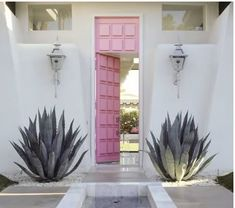 White & grey toned front entrance with pink front door and huge Palm Springs cacti