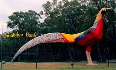 Many people mistakenly think that Australia is lacking in the theme park department. Here's a rundown of the greatest Aussie theme parks! Pheasant Farm, Parks Department, New Year 2014, Paddle Boat, Picnic Area, Amusement Park, Family Travel, Wildlife, Around The Worlds
