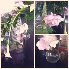 Flowers - Credits Sandrine Meunier
