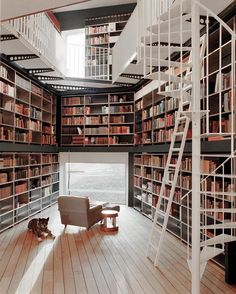 Tuesday interior inspo: library goals. Photo by #IlaiGmbH