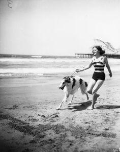"""borzoidaily: """"Woman with her borzoi on the beach. """""""
