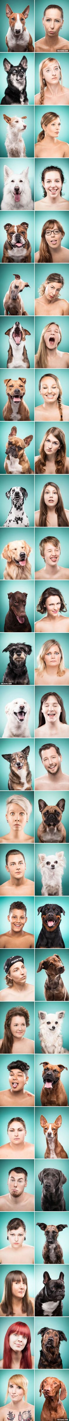 Photographer Captures Dog Owners Mimicking Their Best Friends And It's So Cute! Funny Animal Pictures, Funny Animals, Cute Animals, Animal Fun, Big Dogs, Dogs And Puppies, Doggies, Funny Dogs, Cute Dogs