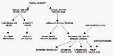 Sociological theory  The problem of elucidating the possible sociological analysis of information phenomena is compounded by the variety of 'schools' of sociology that exist at the present time. The two basic perspectives of social system and social action (Dawe, 1970) have spawned a variety of 'sociologies', some of which are represented in Figure 2.