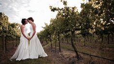 The Vineyards of Blue Wren Winery in Mudgee NSW.