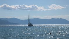 sailing swimming aigina Five islands to visit when sailing in the Saronic Gulf