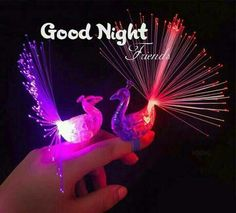 Good Night Dear, Good Night Friends, Good Morning All, Night Love, Good Night Image, Good Night Greetings, Good Night Messages, Night Wishes, Good Night Quotes