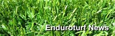 For those looking for more versatility and a bit of luxury Enduroturf also specialises PGA level synthetic putting greens which offer all the same low maintenance benefits of artificial lawn. Synthetic Lawn, Building Development, Fake Grass, Astro Turf, Artificial Turf, Green Garden, Salt And Water, Swimming Pools, Garden Design