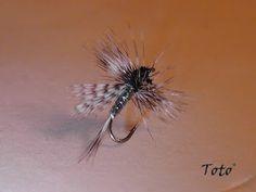The Mosquito Lajita
