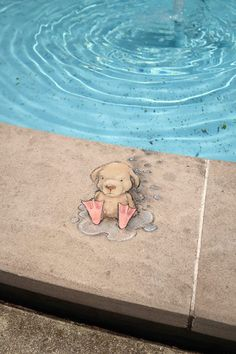 David Zinn 2017. Stan was annoyed to find that flippers doth not a water retriever make. And that he dislikes the smell of wet fur. Andersen Enrichment Center & Memorial Rose Garden, Saginaw, Michigan