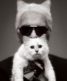 karl lagerfeld: choupette and i
